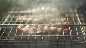 Steaks from trout grilled, close-up. Steaks of trout baked on grill, close-up stock video footage