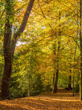 Steal country park Royalty Free Stock Photo