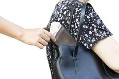 Stealing πορτοφόλι κλεφτών από την τσάντα στοκ εικόνα