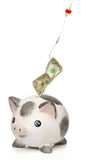 Stealing money from a piggy bank Stock Photo