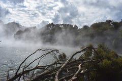 Steam湖新西兰 免版税库存图片