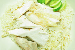 Steam Chicken with Rice (Hainan Chicken) Royalty Free Stock Image
