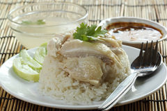 Steam chicken with rice on the plate Royalty Free Stock Photography