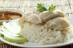 Steam chicken with rice on the plate Stock Photos