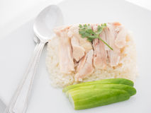 Steam Chicken with Rice Royalty Free Stock Photos
