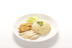 Steam Chicken. Rice on white (Hainan Chicken Stock Images