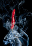 Hot red chilli pepper Stock Images