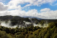 Steam coming out from volcanic valley. Waimangu volcanic valley, the youngest  in New Zealand Stock Photography