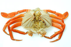 Steam Crab Stock Photo