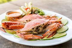 Steam crab seafood Stock Image