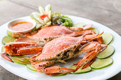 Steam crab seafood Stock Images