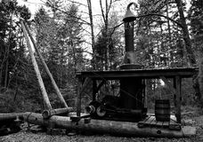 Steam crane. Antique steam crane in woods royalty free stock photography