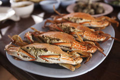 Steam Dungeness crab Royalty Free Stock Images