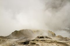 Steam from erupting geyser in Upper Geyser Basin, Yellowstone Na Stock Images