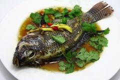 Steam fish. Ready to serve on white plate Stock Photography
