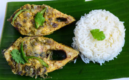 Steam fish Ilish with rice Royalty Free Stock Image