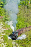 Steam freight train Stock Images
