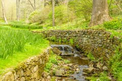 Steam in garden. Fresh water stream running  through a garden Royalty Free Stock Image