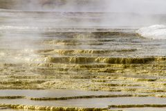 Steam on terraces at Mammoth Hot Springs, Yellowstone National P Stock Photo