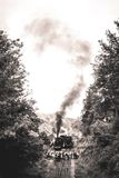 Steam locomotive in the ardennes. Steam locomotive in the belgian ardennes Royalty Free Stock Images
