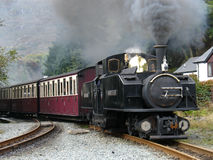 Steam narrow gauge train. Royalty Free Stock Photos