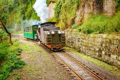 Steam narrow-gauge train Royalty Free Stock Photos