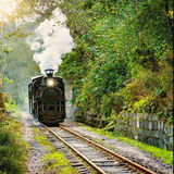 Steam narrow-gauge train Royalty Free Stock Photography