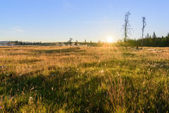 Steam off Lake in a grassy field as the sun is rising Royalty Free Stock Image