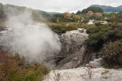 Steam raising from craters in Waiotapu Stock Photo