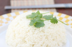 Steam rice in white bowl with chopstick Royalty Free Stock Image
