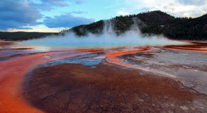 Steam rising off the Grand Prismatic Spring at sunset in Yellowstone National Park in Wyoming US of A. The Grand Prismatic Spring at sunset in the Midway Geyser stock photography