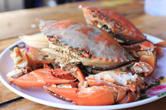 Steam Sea crab Royalty Free Stock Image