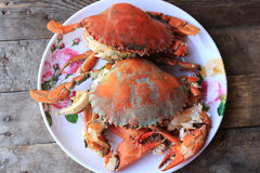 Steam Sea crab Stock Photo