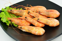 Steam shrimp. Stock Images