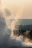 Steam and spray of a geyser at sunset,  Yellowstone NP Stock Images