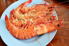 Steam tiger shrimps. Royalty Free Stock Image