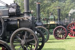 Steam Traction Engines. A collection of steam traction engines at a rally Stock Images