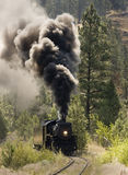 Steam Train royalty free stock photo