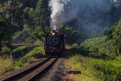 Steam Train Coaches Tourism Stock Photo