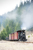 Steam train, Slovakia Stock Photo