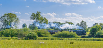 Steam Train In Spring Countryside. A green steam engine 46115 Scots Guardsman leads a train through the spring countryside while sheep graze on a fine day. Shot Royalty Free Stock Photos