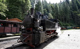 Steam train on Vaser Valley Stock Images