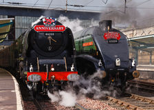 Steam Trains on Parade Royalty Free Stock Photography