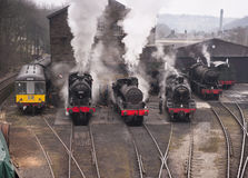 Steam trains in a row Stock Image