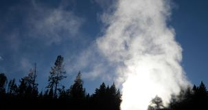 Steam and water vapour from a geyser. Video of steam and water vapor arising from a geyser in Yellowstone National Park, United States of America surrounded by stock video