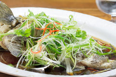 Free Steam Whole Garoupa With Soy Sauce Stock Image - 52488961