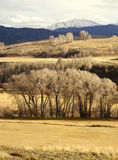 Steamboat Colorado Royalty Free Stock Photography