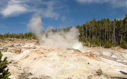 Steamboat Geyser Stock Image