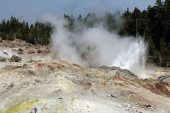 Steamboat geyser. At Yellowstone national park in Montana state, USA Royalty Free Stock Photography