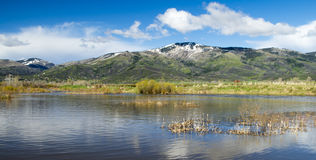 Steamboat Springs, Colorado. View of the Ski Resort over the Yampa River Stock Photography